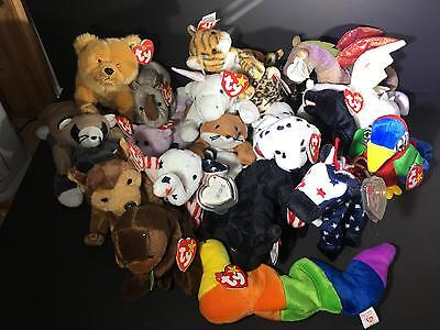 M) Lot 21 Ty Beanie Babies Dragon Parrot Inch Horse Patriot Hang Tush Tags Bears