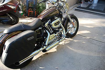 2013 Harley-Davidson Sportster  2013 Harley Davidson Sportster 110th Annv 700 miles Brand New Condition, REDUCED