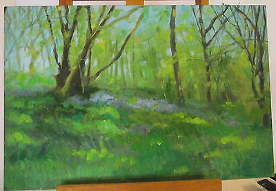 Original signed OIL on board landscape painting blue bell meadow