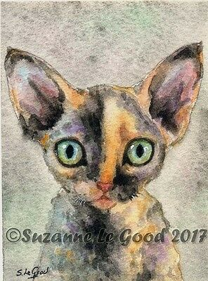 Aceo Original Tortie Devon Rex Kitten Cat Watercolour Painting Suzanne Le Good
