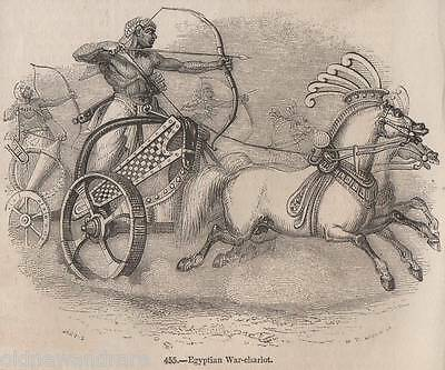 Genuine C1845 Print Horse Riding Racing War Military Breeding Egyptian Egypt