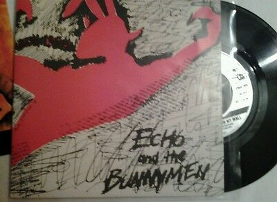 Echo and the BUNNYMEN. The pictures on my wall. P/S