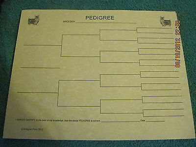 Silky Terrier Blank Pedigree Sheets Pack 10 FREE SHIPPING IN USA dog