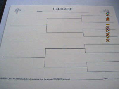 Weimaraner Blank Pedigree Sheets pack of 10