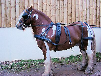 Horse Harness Cob Size Arden Dexter Synthetic Biothane Wipe Clean
