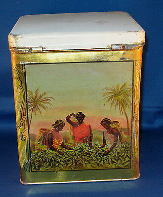 Early Lipton 5# Tea Tin Scenes Women Picking Tea & Cattle with Lid Great Colors