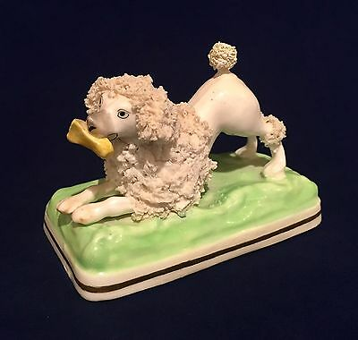 Antique Staffordshire Pottery Miniature Poodle Dog Crouching With Bone