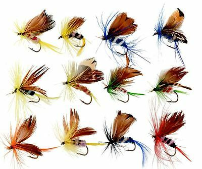 12 Fishing Flies Dry Fly Lures Butterfly Trout Hooks Tackle Callop Freshwater