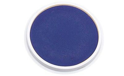 Giant Washable Paint Pad Blue As pictured