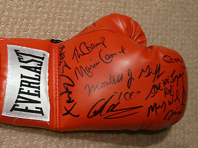 Multi Signed Everlast boxing glove - 10 Boxing Superstars 10 Khan Vargas Chuvalo