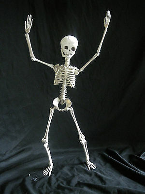 Cute Funny Pose & Hold Arrange and Stay Halloween Skeleton Party Decoration 19""