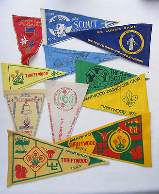 Boy Scout Badge Pennant Collection (291)