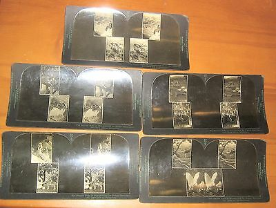 1900s Keystone View Co. Eye Comfort & Depth Perception Series,Stereoscopic Cards