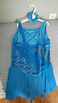 Figure Skating Dress And Head Band (Jerry's) Adult Xl