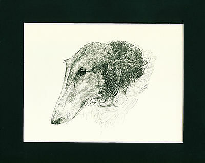 Dog Print 1935 Borzoi Dog by Francis Wardle VINTAGE