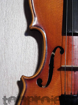 petit 1/4 violon violon Stradivarius copie violon violin small violon Germany