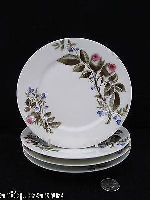 4 Antique  Scotch Thistle Plates Hand Painted Ready For Display!