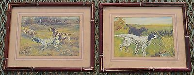 Vintage Pair Of Prints - English Pointer Dog Pictures Hunting Pointers