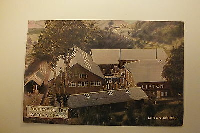 POOPRASSIE Tea factory CEYLON...Lipton Series postcard. Photochrom Co. 1908