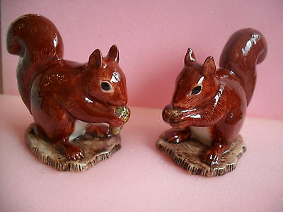 Unusual Ceramic Pair Of Squirrels Salt And Pepper Pots Ideal Gift Boxed.