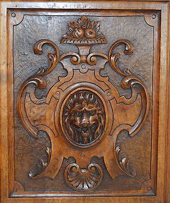 French Antique Carved Salvaged Wood Door Panel - Lion Shield Coat of Arms