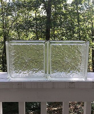 """Two Pittsburgh Corning Premiere Series 8""""x8""""x4"""" Glass Block IceScapes NEW"""
