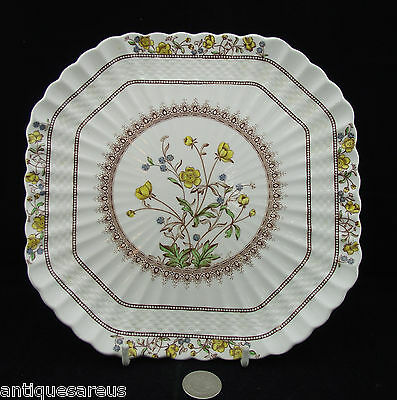 "Copeland Spode Buttercup Square 8 3/4"" Lunch Or Salad  Plate"