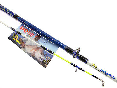 Insanity Custom High Modulus Nano Boat Overhead Fishing Rod 6Ft6 10-15Kg
