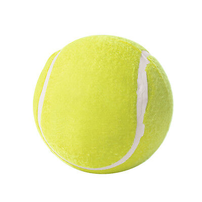 Gioco per cani TENNISBALL Big Hunter 92379