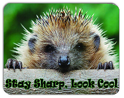 Stay Sharp Look Cool, Hedgehog Mouse Mat, Mousepad,
