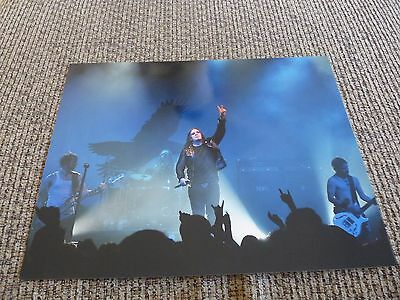 Shinedown Band 11x14 Live Color Music Picture Photo