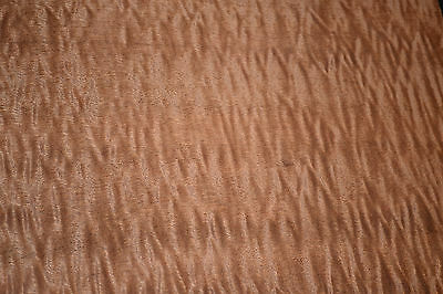 Pomelle Sapele Raw Wood Veneer 9 x 27 inches. 1/42nd thick             a7837-12