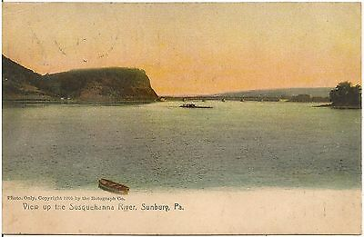 View up the Susquehanna River in Sunbury PA Postcard 1907
