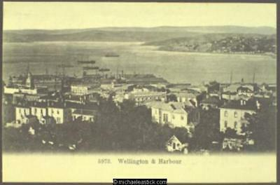 Wellington: town and harbour