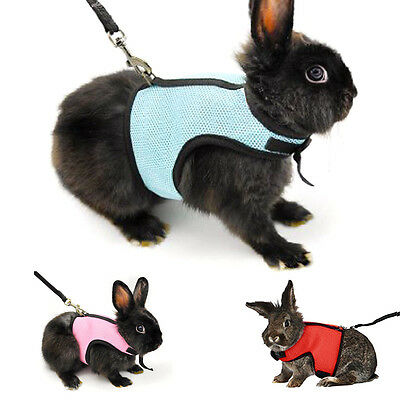 Step-in Safety Breathable Mesh Dog Harness with Leads for Hamster Rabbit Guinea