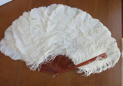 edwardian,victorian,antique,HUGE,feather fan,in ORIG. TIFFANY BOX,imperfect,