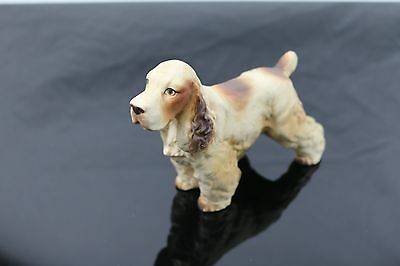 Vintage English Springer Spaniel Dog Japan