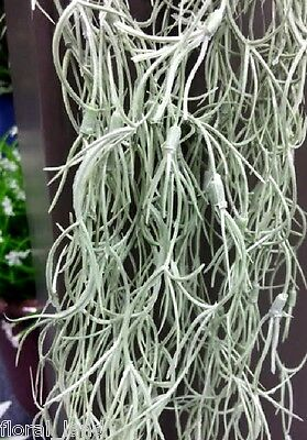 Artificial Silk Flower Air Plant Spanish Moss Oldman Beard Gray Airmoss Hanging
