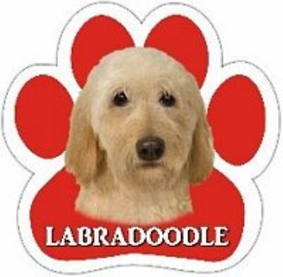 Yellow Labradoodle Dog Breed Paw Print Magnet (UV Coated)
