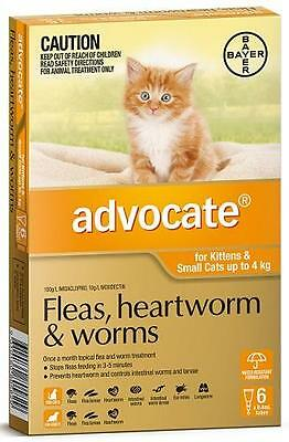 Advocate Flea and Worm Treatment For Kittens and Small Cats under 4kg 6 pack