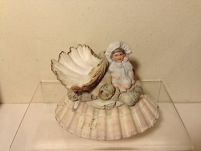 Vintage Shell Art Whimsy German Bisque Baby Figurine Sculpture