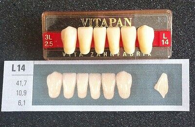 Vitapan Denture Teeth Plastic Dentist Dental Lab  L14   3L2.5