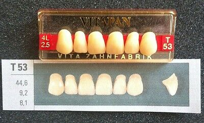Vitapan Denture Teeth Plastic Dentist Dental Lab    T53     4L2.5