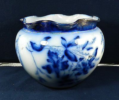 """Antique, Thomas Forester (Tf&sons) Flow Blue, Phoenix  China """"jardiniere"""""""