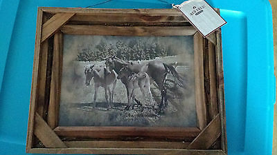 Red Shed Horse Photo Framed Art