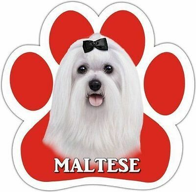 Maltese Dog Breed Paw Print Magnet (UV Coated)