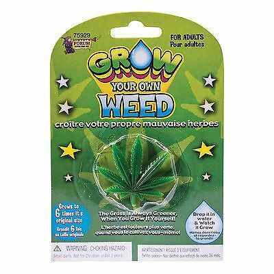 Grow A Your Own Weed Some Drugs Pot Secret Santa Filler Stocking Idea UK