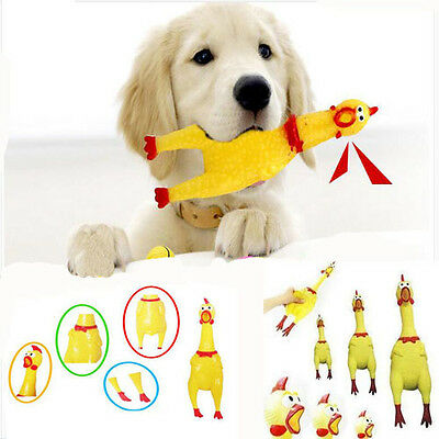 17CM Jaune En hurlant Poulet Chien Mâcher Jouet Screaming Chicken Dog Grinçant
