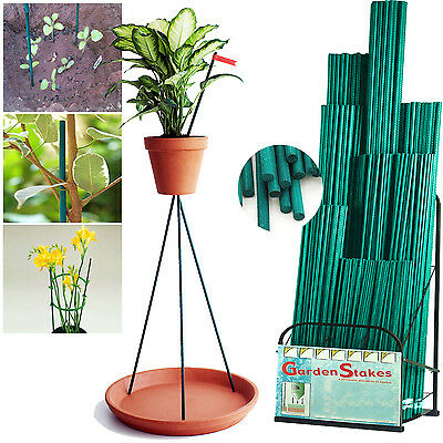 Bamboo Green Split Canes Support Sticks Plant Garden Lily Bulb Flower Heavy Duty