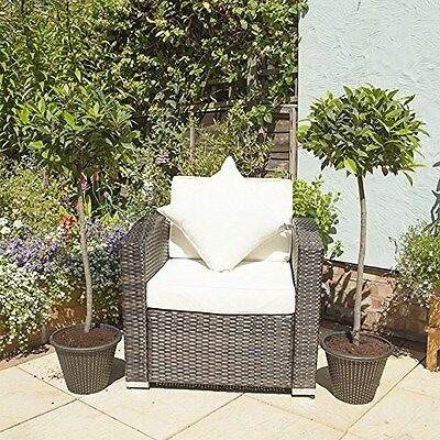 Standard Bay Trees 1M tall (Pair of 2) Easy Care Maintain Stunning Plants
